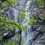 170308琴滝(7)