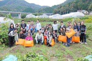黒豆収穫祭